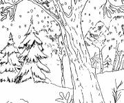 Coloring pages Snow falls in the Forest