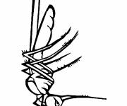 Coloring pages Annoying mosquito
