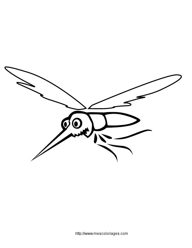 Free coloring and drawings Easy mosquito Coloring page