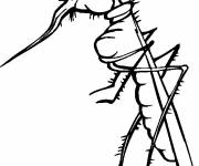 Coloring pages Itchy mosquito