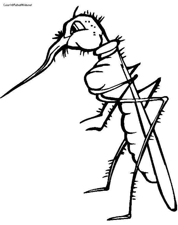 Free coloring and drawings Itchy mosquito Coloring page