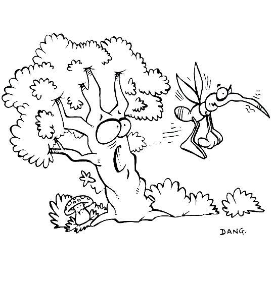 Free coloring and drawings Mosquito and Tree Coloring page