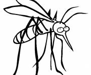 Free coloring and drawings Mosquito in black Coloring page