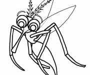 Coloring pages Mosquito insect vampire