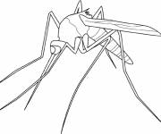 Free coloring and drawings Stylized mosquito Coloring page