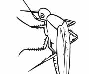 Coloring pages Vector mosquito to download