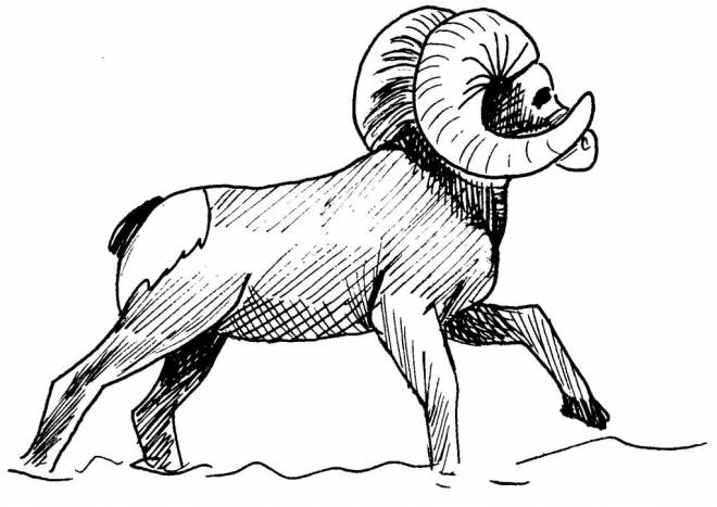 Free coloring and drawings Maternal Mountain Animals Coloring page