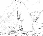 Free coloring and drawings Mountain and animals Coloring page