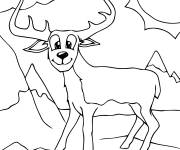 Free coloring and drawings Mountain animal Coloring page