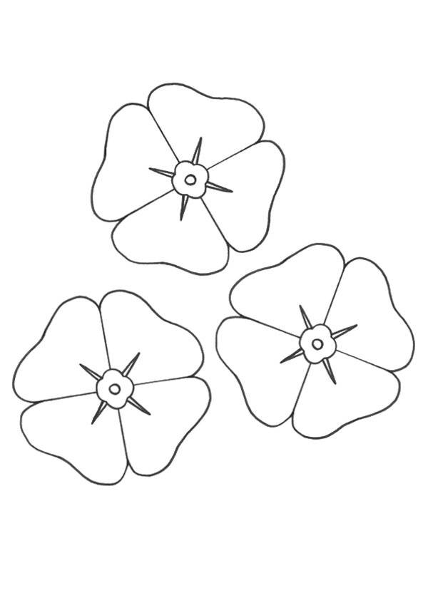 Free coloring and drawings Admirable Poppy Coloring page