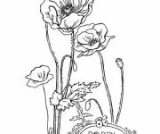 Coloring pages Beautiful Poppy Flower