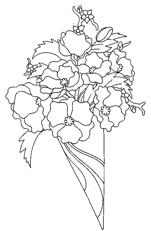 Free coloring and drawings Bouquet of Poppy Coloring page