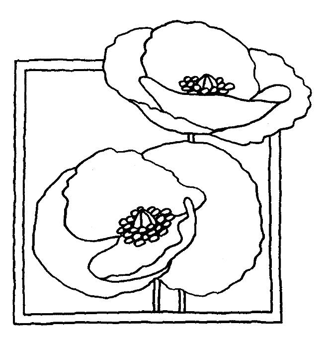 Free coloring and drawings Easy poppy Coloring page