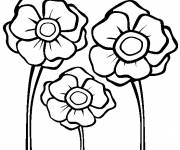 Coloring pages Poppies easy drawing