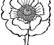 Coloring pages Poppy front view