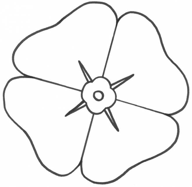 Free coloring and drawings Single poppy flower Coloring page