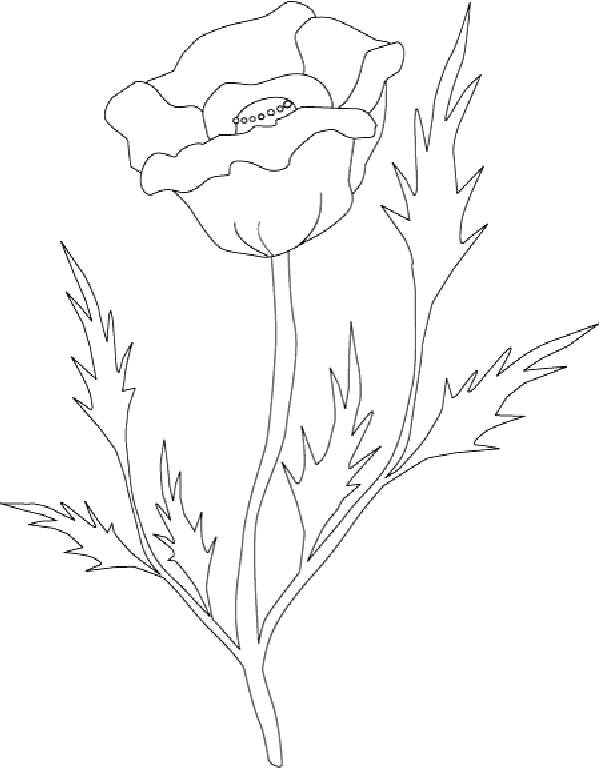 Free coloring and drawings Stylized poppy Coloring page