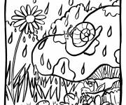 Coloring pages Snail and Rain