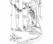 Coloring pages Forest and river landscape