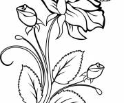 Coloring pages Maternal roses