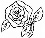 Coloring pages Pencil roses
