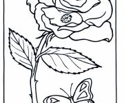Coloring pages Rose and Butterfly