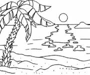 Coloring pages Palm tree on the beach