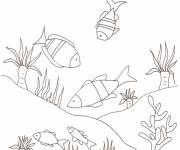 Coloring pages Seabed full of fish