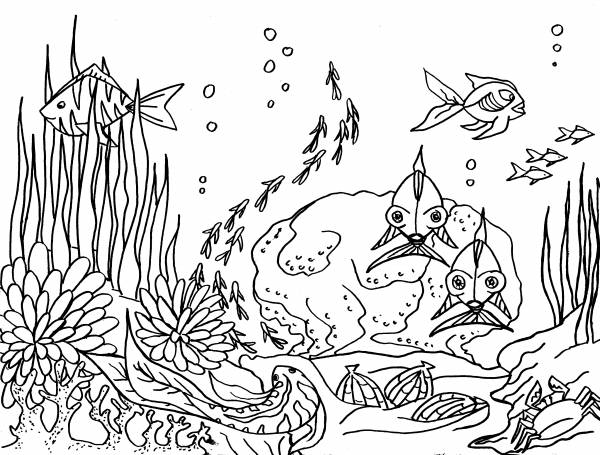Free coloring and drawings Sea Life Coloring page