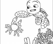 Free coloring and drawings Sea Turtle Coloring page