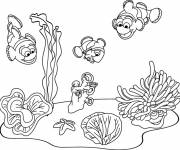 Coloring pages Seabed fish