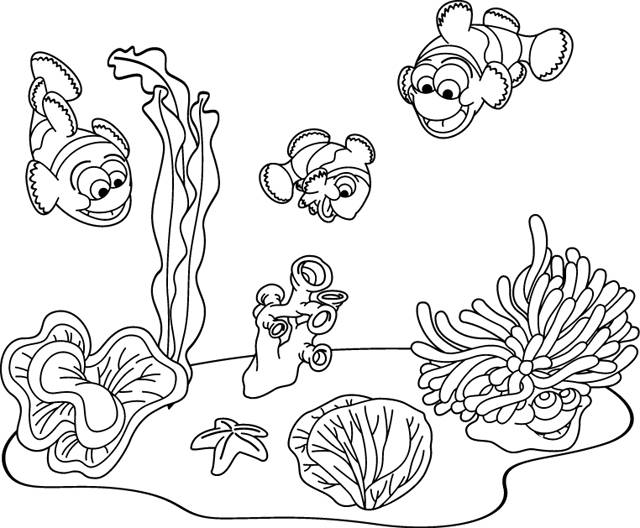 Free coloring and drawings Seabed fish Coloring page