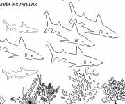 Coloring pages Sharks in the Seabed