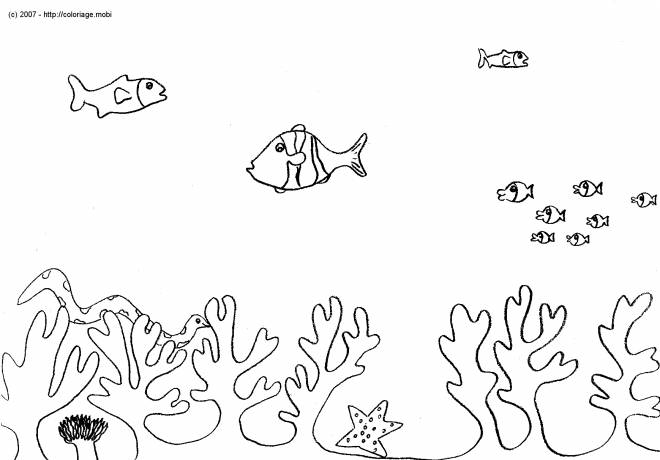Free coloring and drawings Underwater background Coloring page