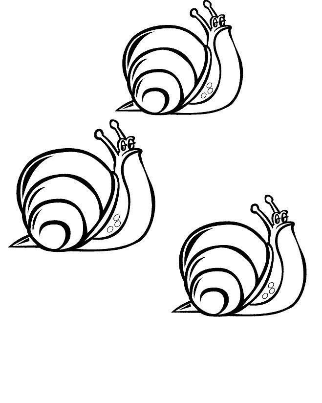 Free coloring and drawings Confident snails Coloring page