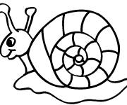Free coloring and drawings Easy snail Coloring page