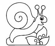 Coloring pages Easy snail for child