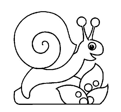 Free coloring and drawings Easy snail for child Coloring page