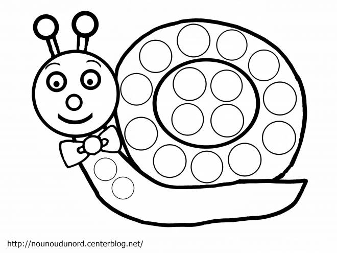 Free coloring and drawings Elegant snail Coloring page