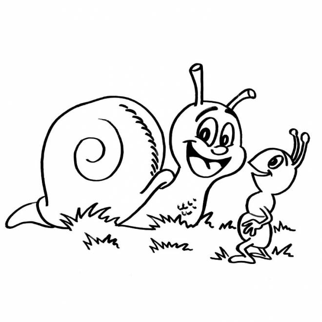 Free coloring and drawings Outdoor snail Coloring page