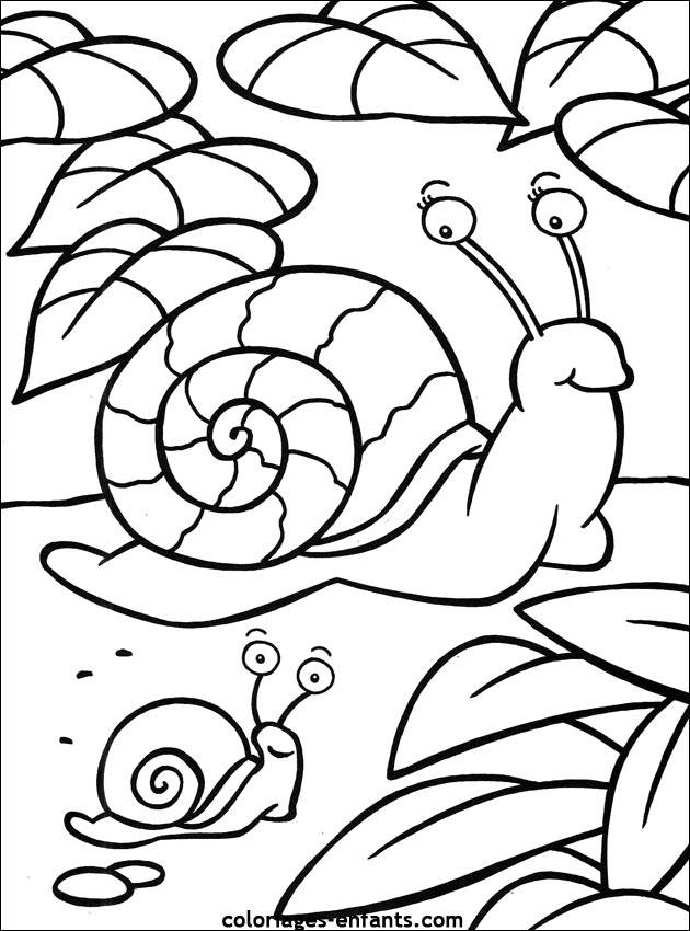 Free coloring and drawings Snail and baby Coloring page