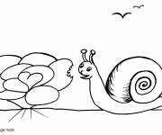 Coloring pages Snail eating