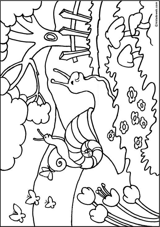Free coloring and drawings Snail in the forest Coloring page
