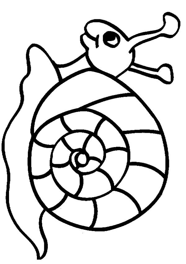 Free coloring and drawings Snail smiling Coloring page