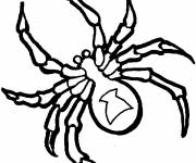Coloring pages Black and white spider