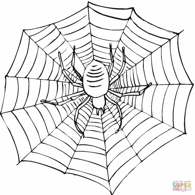 Free coloring and drawings Easy Canvas Coloring page