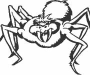 Coloring pages Evil spider
