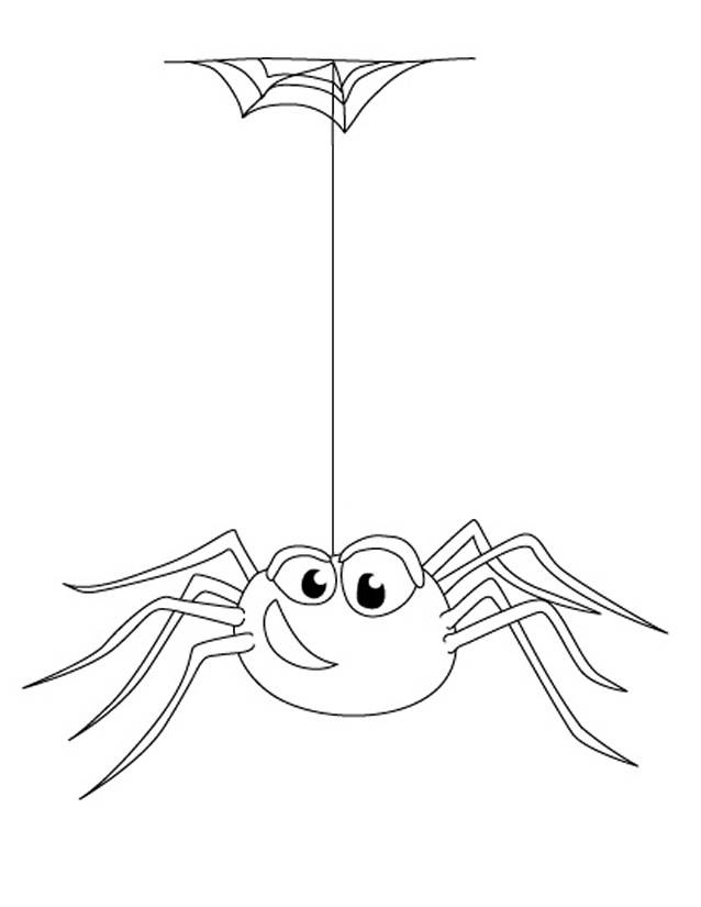 Free coloring and drawings funny spider Coloring page