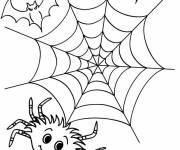 Coloring pages Halloween spider