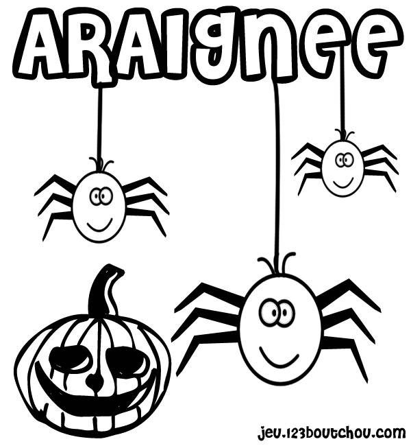Free coloring and drawings Halloween spider and pumpkin Coloring page